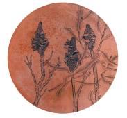 Banksia-menziessi-copper-disc