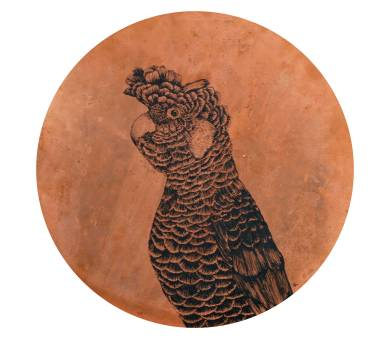 Carnaby-Cockatoo-copper-disc